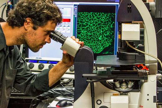 biophotonics research irvine