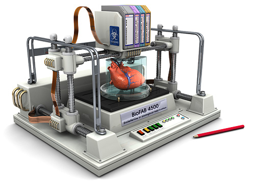 bioprinting research