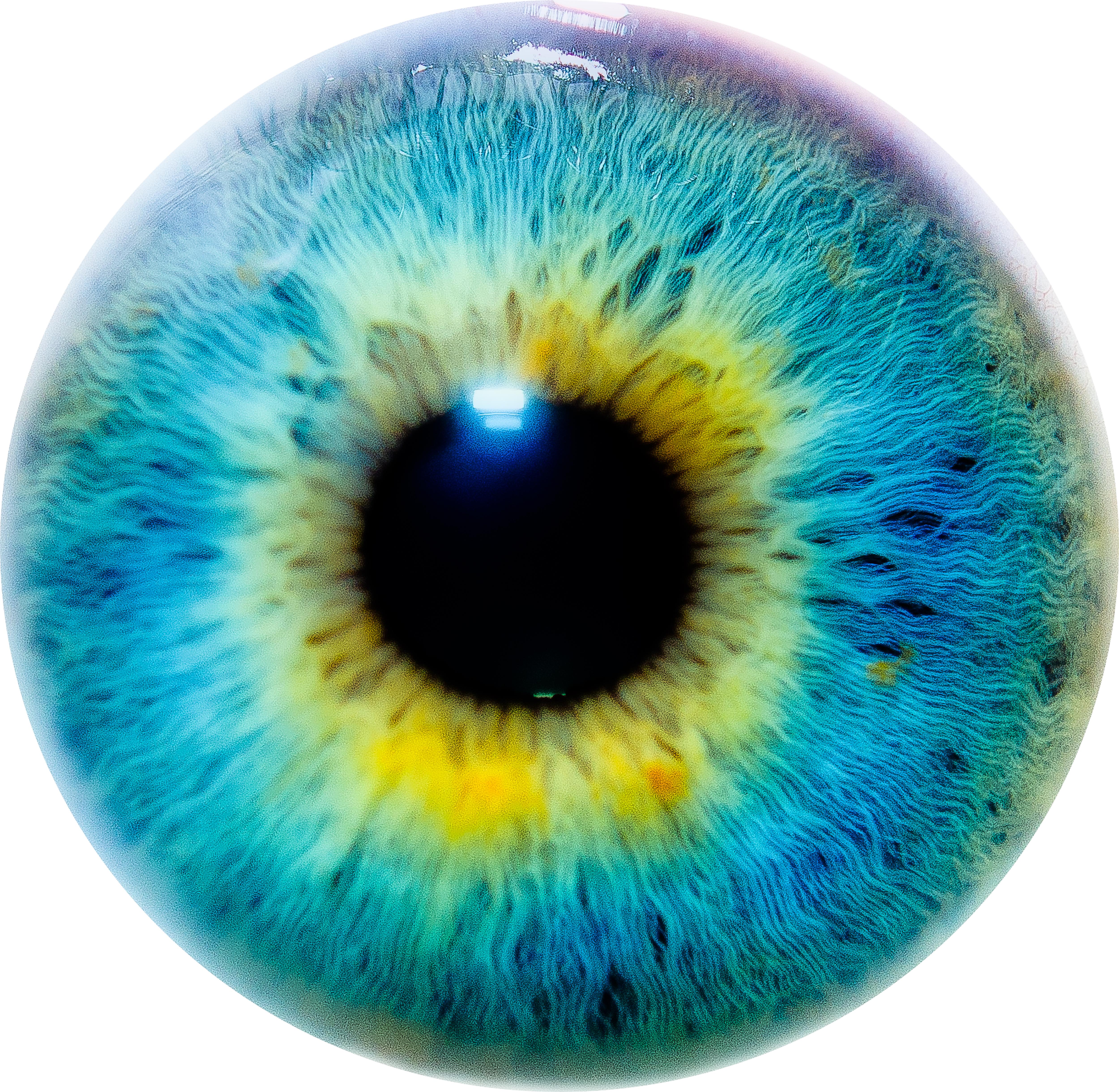 eye biochemistry