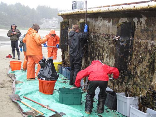 osu marine science research