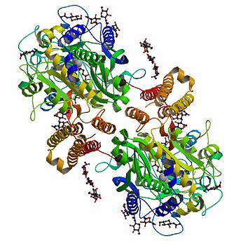 prostate cancer protein imaging technology