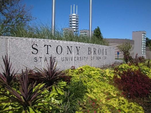 stony brook research