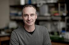 WSU prostate cancer research scientist