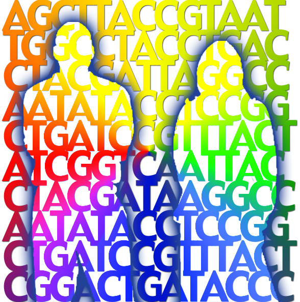 Life science researchers on this project will further study the human genome.