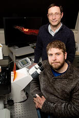 Illinois researchers