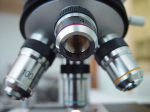 optical microscope biotechnology