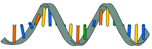 rna research