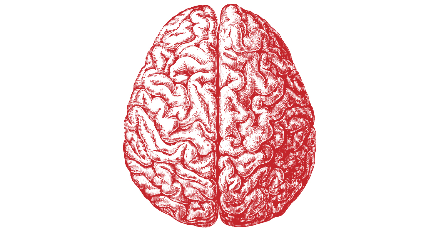 Scientists learning more about the brain in Illinois.