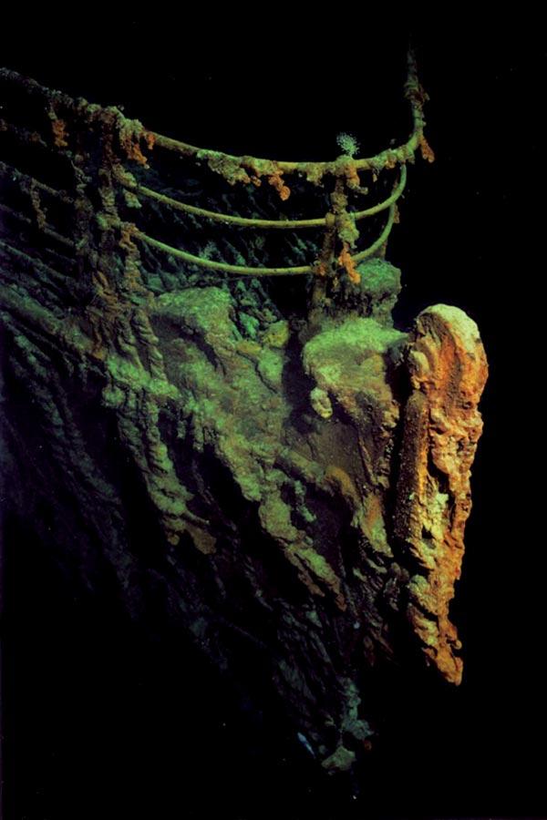 Rust-forming bacteria