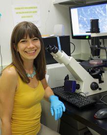 UA_Scientist_neuron_connections