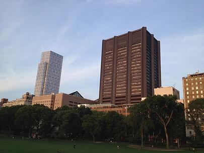 Mount Sinai in New York is a leading, multi-million dollar life science research marketplace.