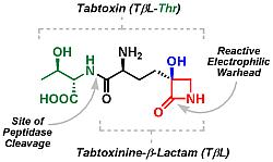 antibiotic bioresearch
