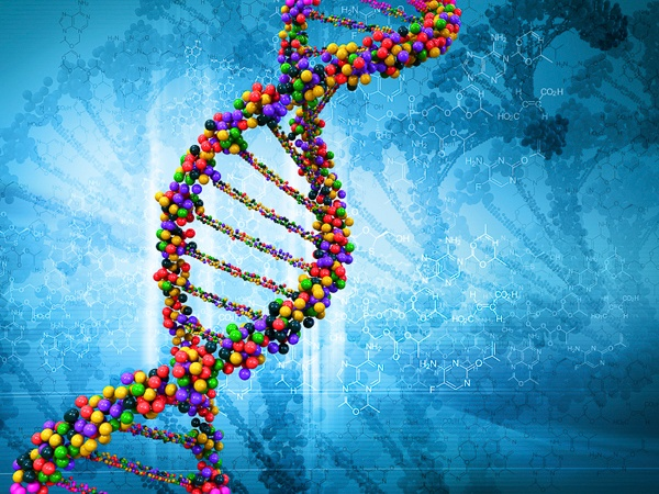 The McDonnell Genome Institute at Washington University in St. Louis is one of 4 institutions involved in this network, and will be receiving $60 million over the next 4 years to study genomics and common diseases.