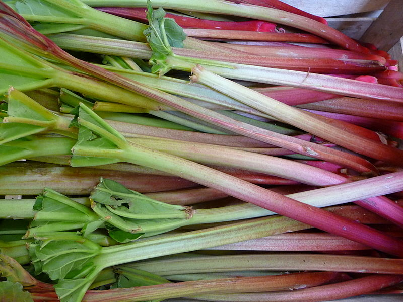 An orange pigment found in rhubarb and lichens has the potential to treat cancer.