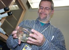 Dr. Robert cancer research