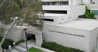 UCSD_Neuraland_Behavior.jpg