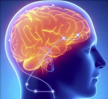 UCSF Bioresearch Unlocks NIH funding, New Understanding of Parkinson's