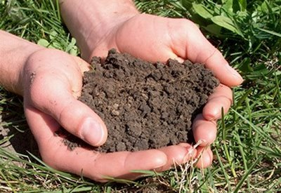 agriculture soil biotech