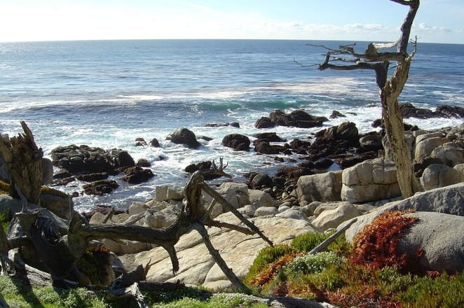 pebble-beach-sf-5-1513810
