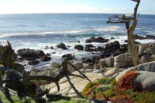 pebble-beach-sf-5-1513810